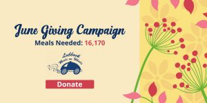 Summer giving campaign